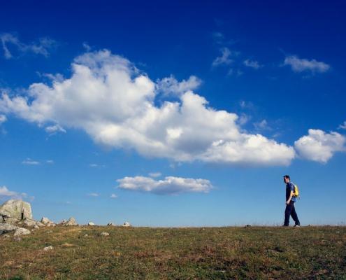 Die Lehren des Zen – Wandern