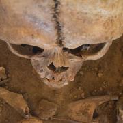 Afrikanische Astrologie - Zukunft per Knochenwerfen