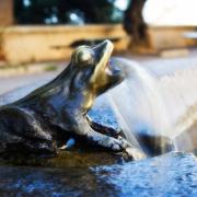 Der Frosch in der Mythologie