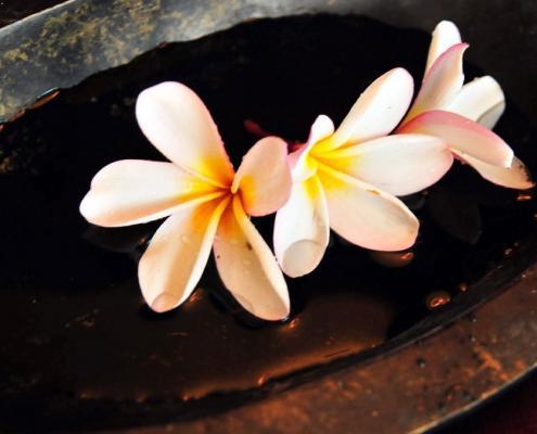 Lass Dich von Blumen inspirieren!