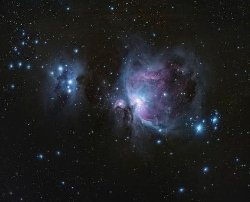 Das Sternbild: Schwan